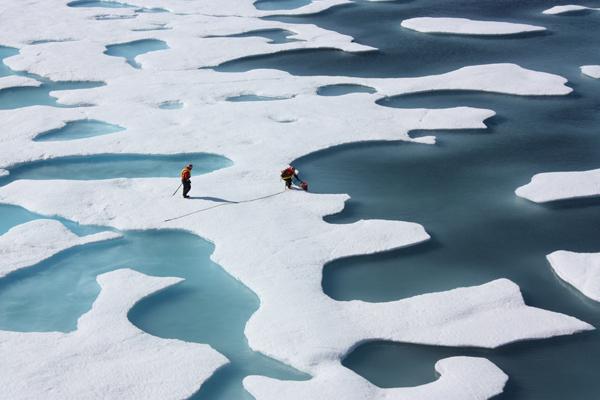 ledas-arktyje